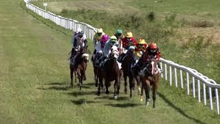 Vidéo de la course PMU PRIX DU HARAS DU BERLAIS - PRIX DU NOUVEL AN