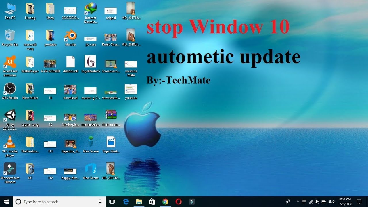 disable windows 10 update service