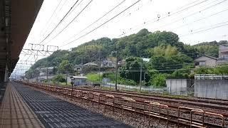 Y160記念列車の旅号~国府津駅