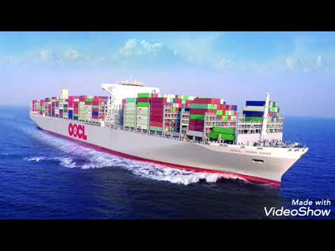 importance of ports and risks port