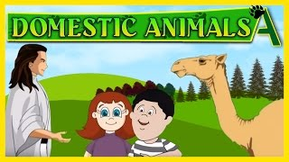 Name Of Domestic Animals  Song for kids