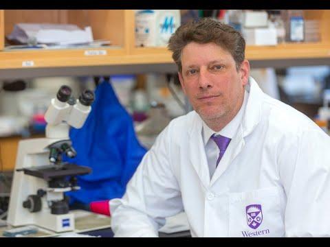 COVID-19: Western University Research Team Working On Coronavirus Vaccine