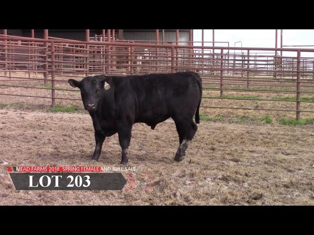 Mead Farms Lot 203