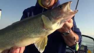 2014 Show #4: Bottom Bouncing for Walleye