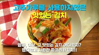 고추가루를 사용하지않은 맛있는 김치(PAPRIKA BA…