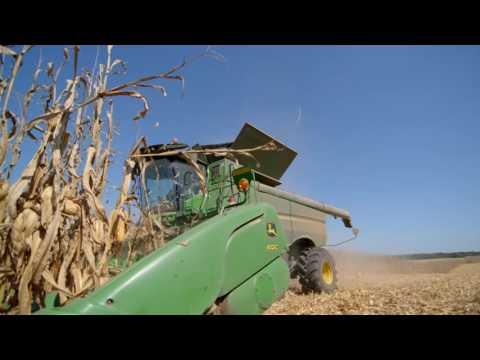 Farming Feeds Alabama - Wheat and Feed Grains