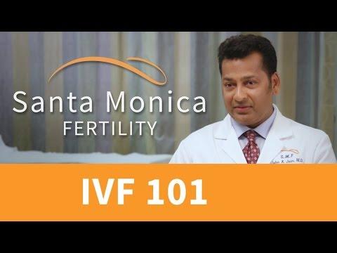 In Vitro Fertilization (In vitro fertilization treatments) Treatment