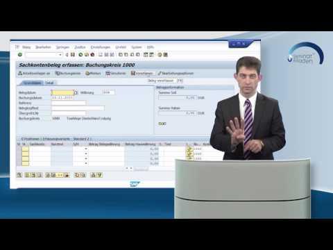 SAP® Finanzbuchhaltung Buchungshilfen (Lernvideo)
