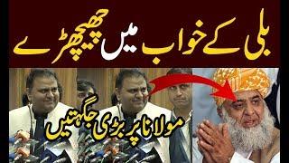 PTI Leader Fawad Chaudhry's funny comments on JUI leader Maulana Fazal Ur Rehman |Dekhty Raho TV|-HD