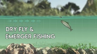 Dry Flies & Emergers - How to Use