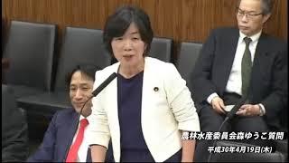 農林水産委員会 森ゆうこ【動画】(2018/04/19)