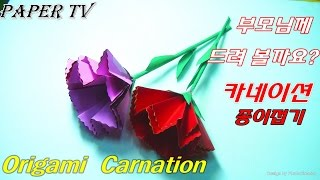 [Paper TV] Origami flower(Carnation)카네이션 종이접기 折り紙 カーネーション como hacer clavel de papel cravo de papel