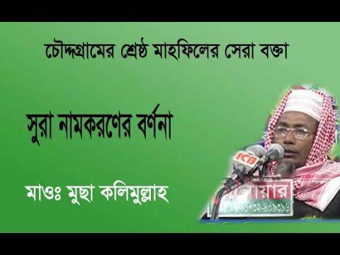 Mowlana Musa Kalimullah | Bangla Waz | ICB Digital | 2017