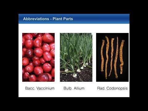 Bot100 - Herbal Formulations