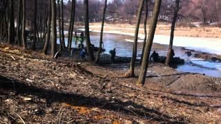 видео Благоустройство в восстановлении прудов. Зачем это нужно?