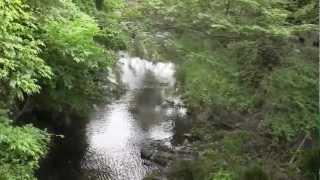 鎌倉名水百選ー琴弾橋(ことひき)からの緑に囲まれた滑川の清流①★4