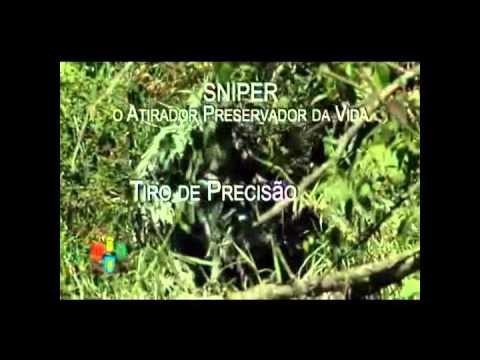 Vídeo Curso de papiloscopia