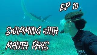 Diving with MANTA RAYS & incredible coral at PINK BEACH! Komodo Cont. (Sailing Blue Moon) Ep. 10
