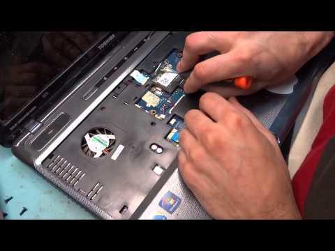 акционеров торговой как разобрать ноутбук тошиба фото инструкции нам