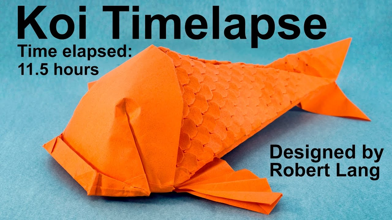 hight resolution of origami koi fish with 400 scales timelapse robert lang