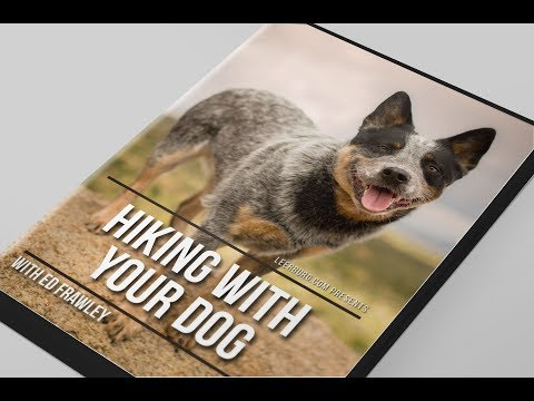 Hiking With Your Dog - DVD