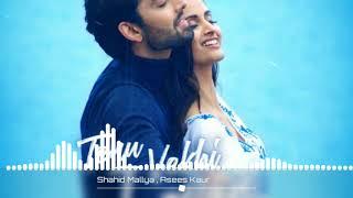 Tenu Vekhi Jaavan (AUDIO) : Shahid Mallya, Asees Kaur || Himansh Kohli || Times Music.