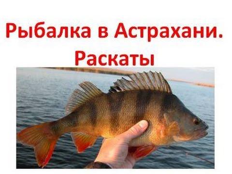 Рыбалка в Астрахани. Рыбалка в Астрахани на Раскатах