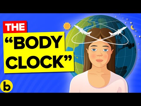 How Your Body's Internal Clock Affects Your Health
