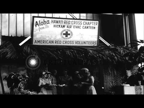 Wounded French troops from Indochina,  on way home to France, stop at Hickam Air ...HD Stock Footage
