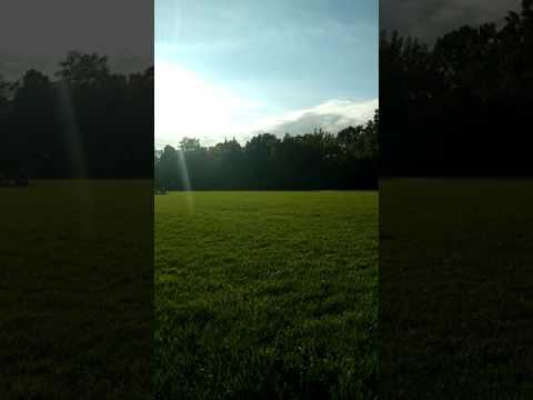 Great lawn break