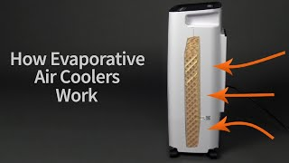 How Evaporative Air Coolers Work | Sylvane