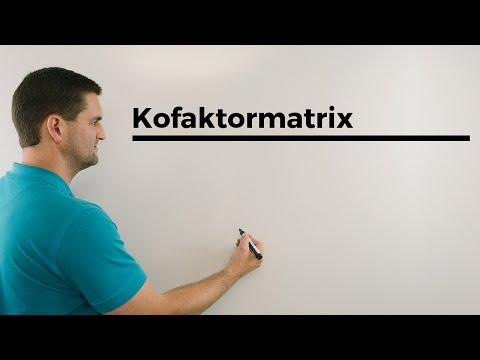 ▶ Fundamentalsatz der Algebra und komplexe Nullstellen (3/5) [ by MATHE.study ]из YouTube · Длительность: 2 мин32 с