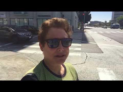 Part 3 West Los Angeles (Sawtelle Japantown)