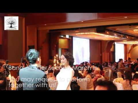 ivan levine entertainment live band for wedding