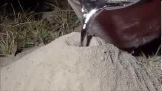 Colocando alumínio fundido em uma colônia de formigas