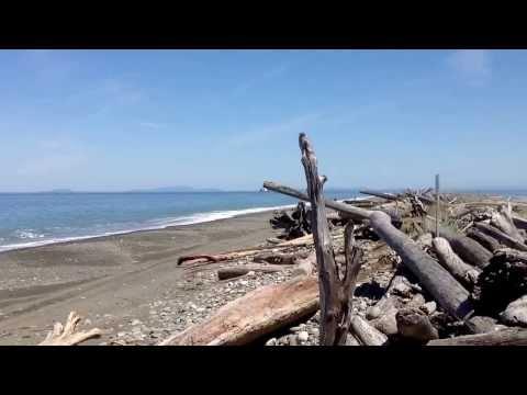 Dungeness Spit - Dungeness Wildlife Refuge, Juts into the Strait of Juan De Fuca, Washington State.