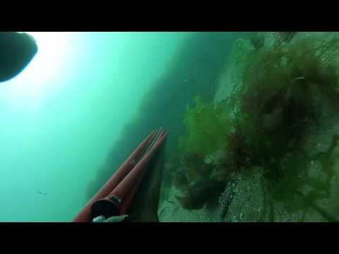 Promenade sous marine
