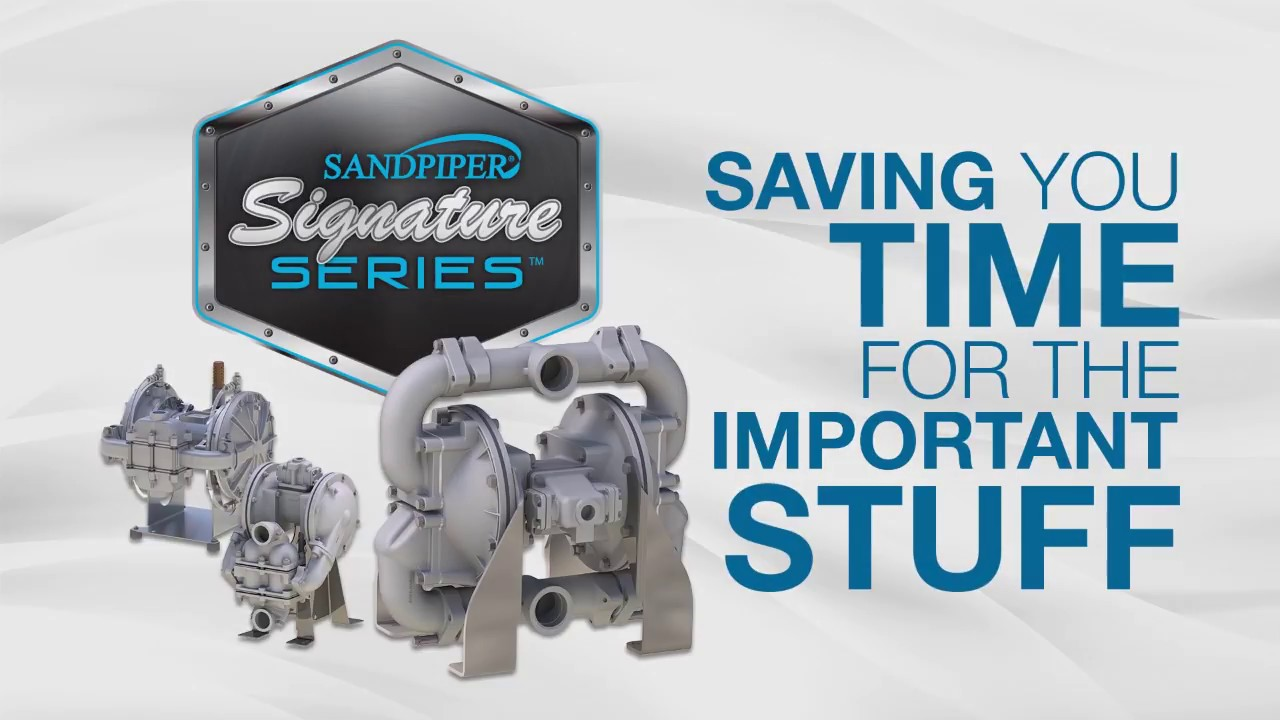 SANDPIPER Heavy Duty Flap Valve Pumps for Sumps and Wet Wells from Warren  Rupp