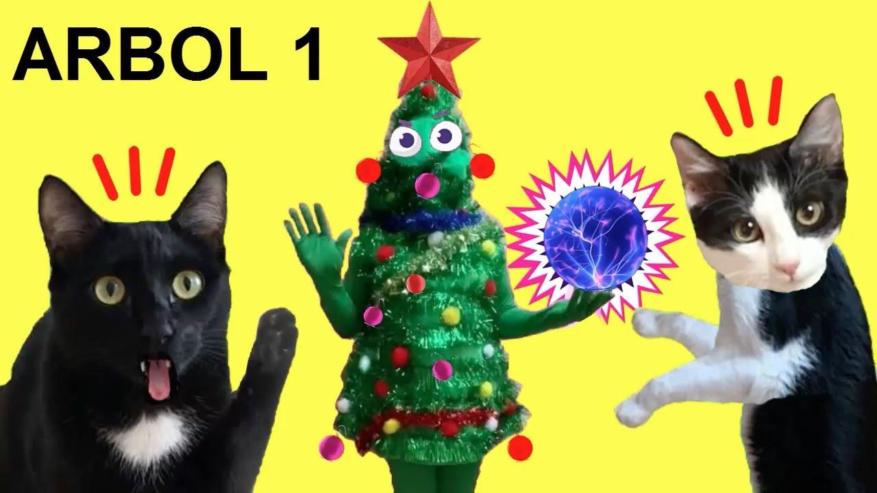 Gatos Luna y Estrella reaccionan al Árbol de Navidad Misterioso CAP 1 / Videos de gatitos