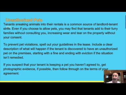 Common Lease Violations You Should Know According To Houston Property Management Company