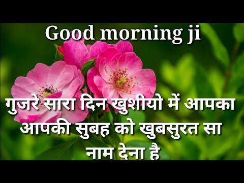 Gujre Sara Din Khushiyo Me Aapka | Good Morning Shayari | Good Morning Video | Good Morning Messege