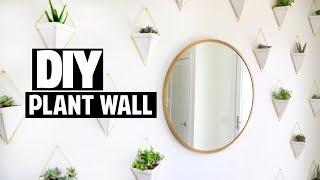 DIY Succulent Plant Wall / Room Decor! | Ashley Nichole
