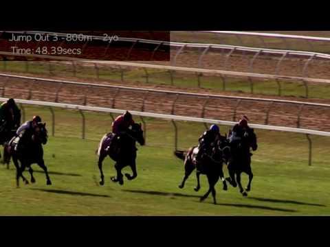 Cranbourne Jump Outs 12 Dec   Jump Out 3