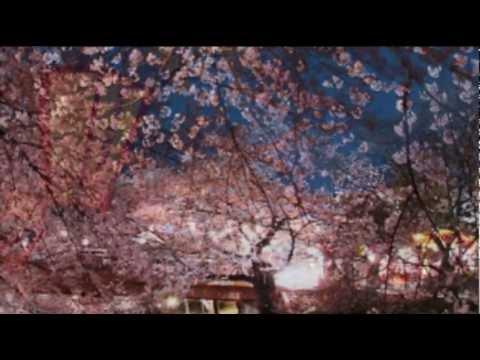 SUKIYAKI - RAY DAVIS & HIS ORCHESTRA