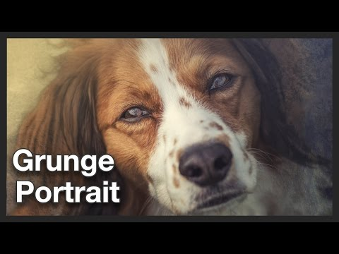 Dog Photo | Portrait Grunge Effect | Photoshop Tutorial