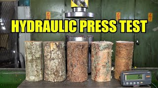 Which is the Strongest Tree? Hydraulic Press Test!