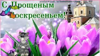 ПРОЩЁНОЕ ВОСКРЕСЕНЬЕ  Красивое Поздравление#прощеноевоскресенье