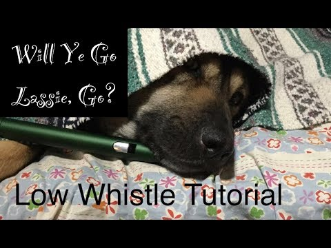 Will Ye Go Lassie, Go? | Low Whistle Tutorial thumbnail