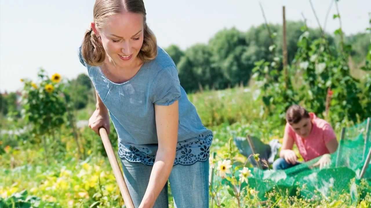 Garten Basics Gartnern Fur Anfanger Gu Gartenratgeber Youtube