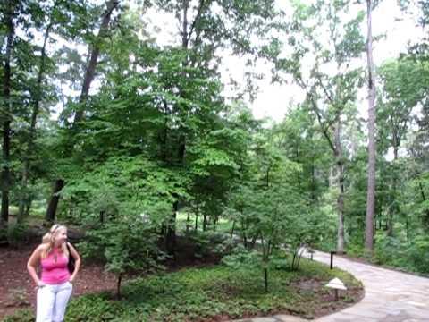 Garvan botanical gardens, AR